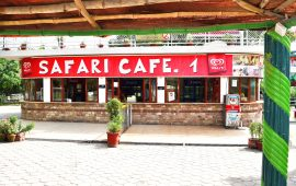 Introducing new Safari cafe